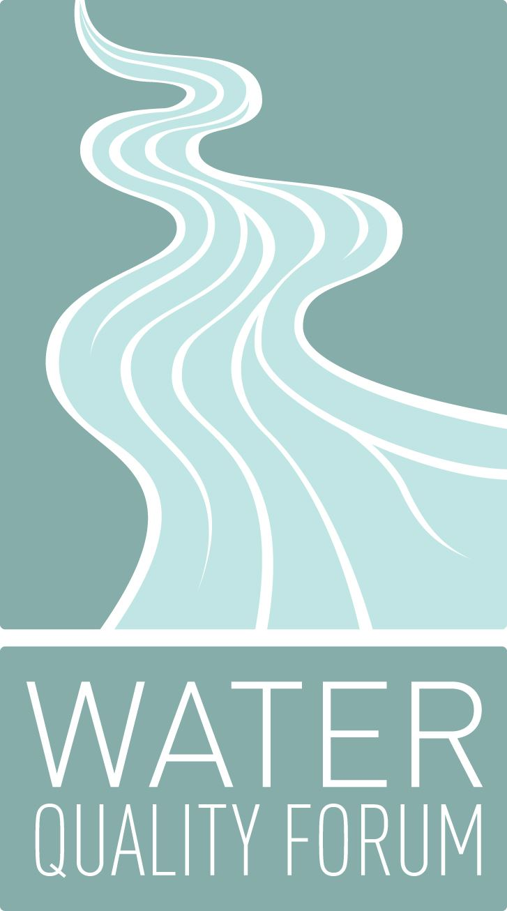 water quality forum logo. an agua and teal stream flowing down to the words water quality forum