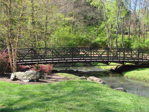 A photo of the beautiful pedestrian bridge over the creek at Founders Park at Campbell Station.