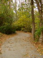 Photo of Grigsby Chapel greenway, a paved path through the woods with some hills.