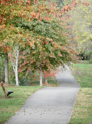 A photo of the Turkey Creek greenway, a rolling paved trail with some tree coverage.