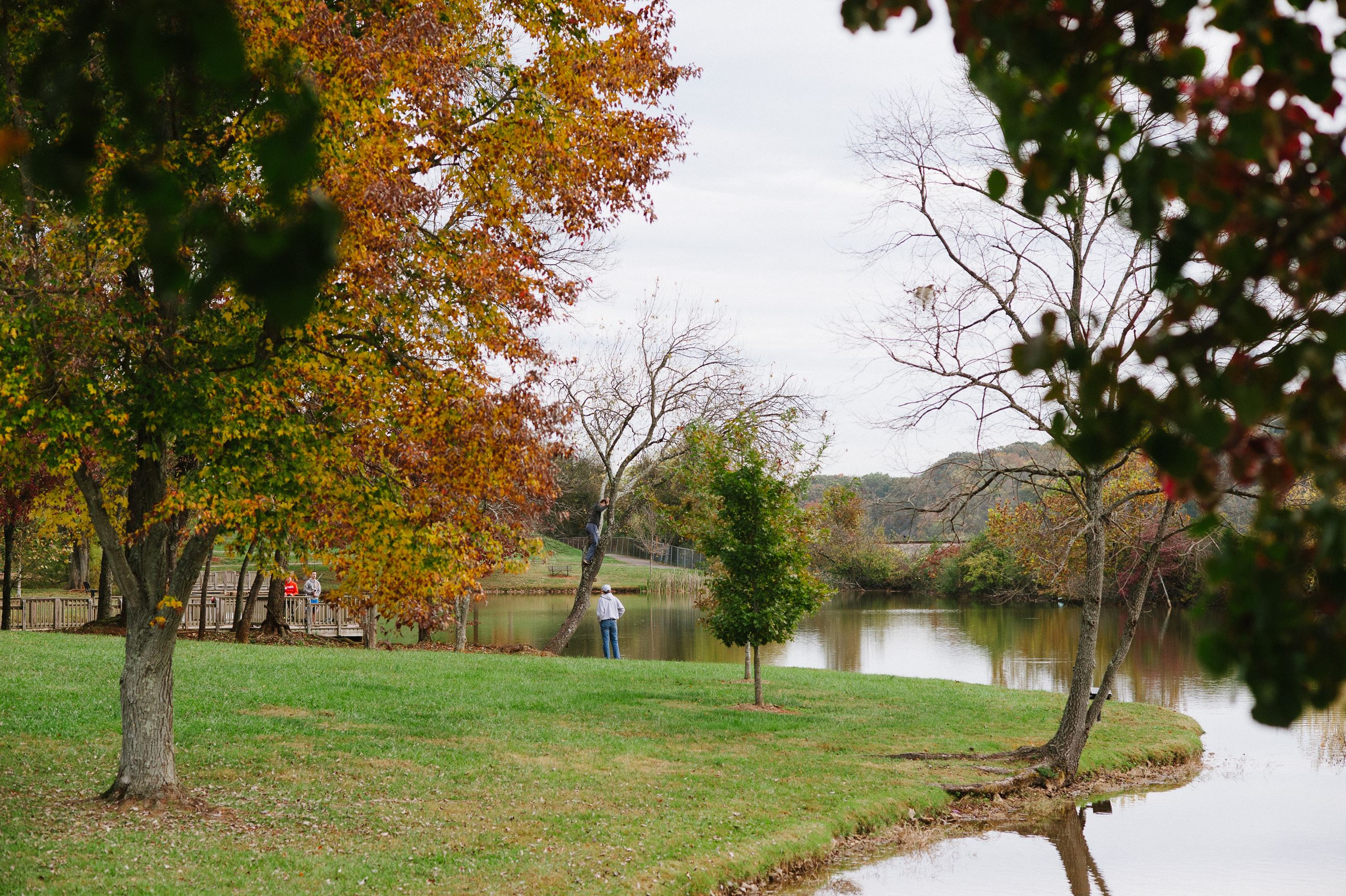 A fall photo of Anchor Park. A beautiful setting with trees and grass beside the water.