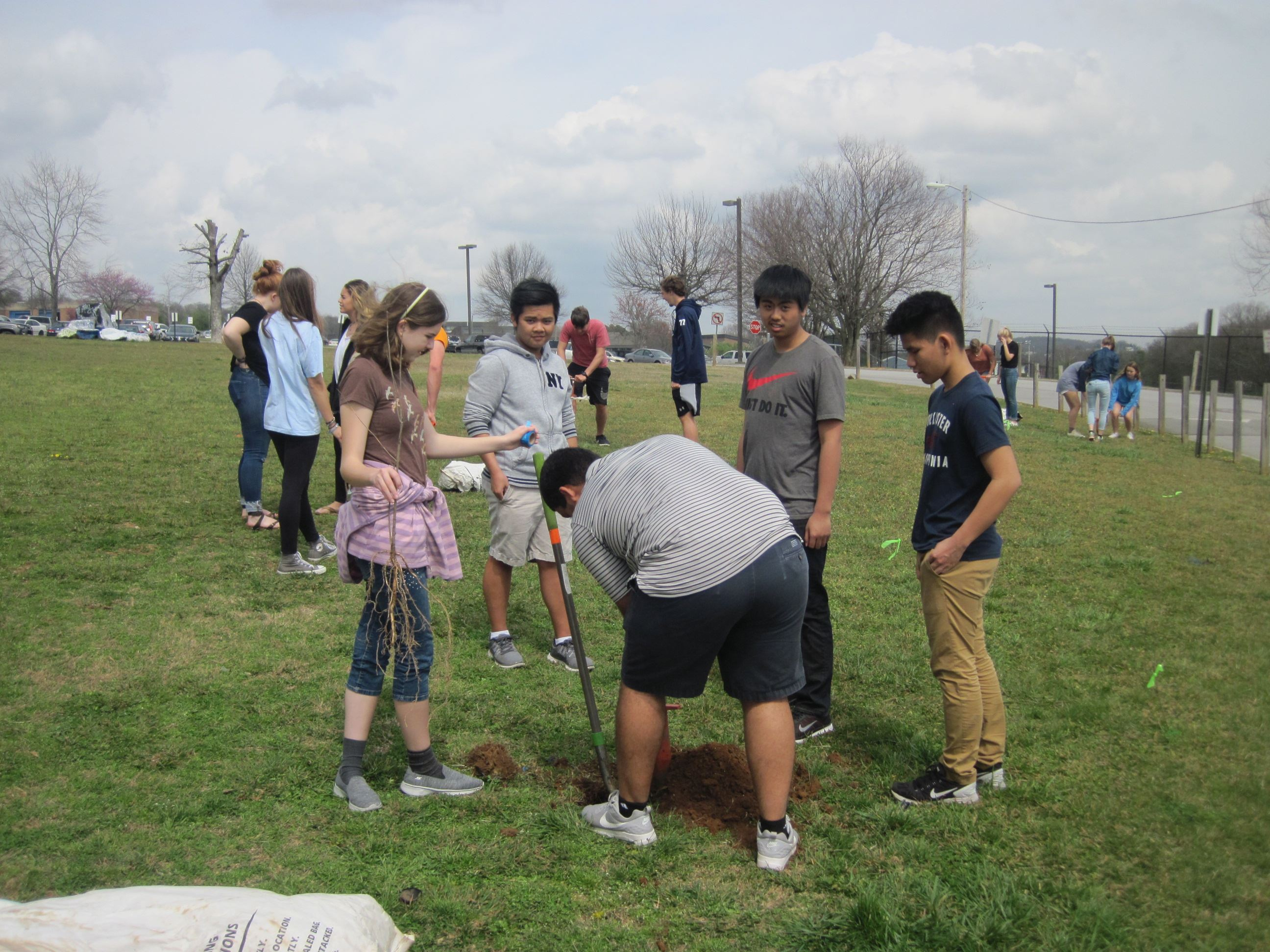 a small group of high school students planting bare root tree seedlings in a field